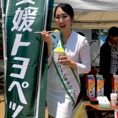 ふれあいグリーンキャンペーンin愛媛2日目
