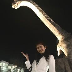 恐竜のいる県
