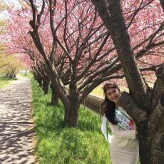 トヨペットふれあいグリーンキャンペーンin新潟県